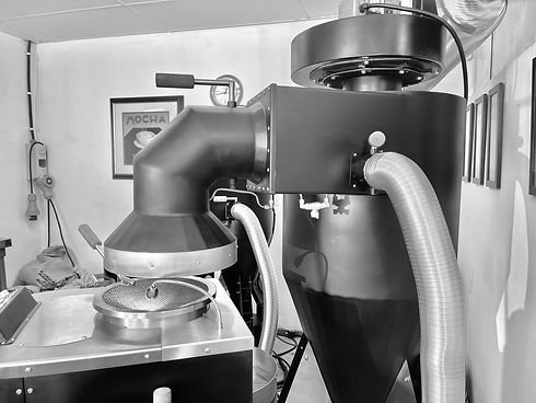 Cyclone extraction system air-motion roaster