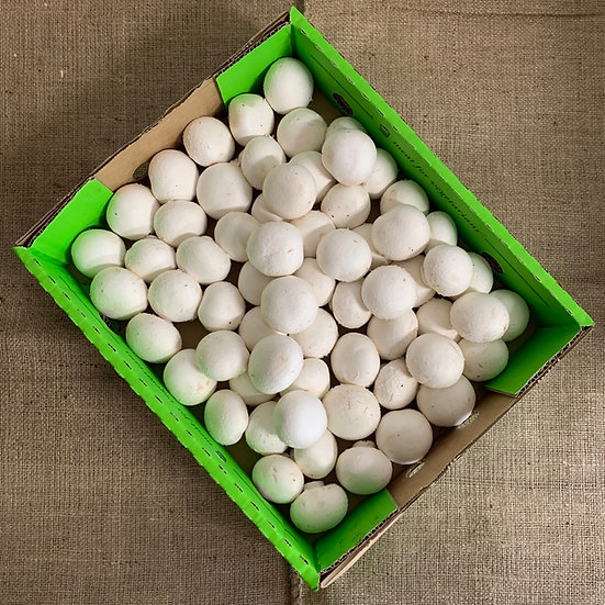 Mushroom White Medium Button  (250G Bag)