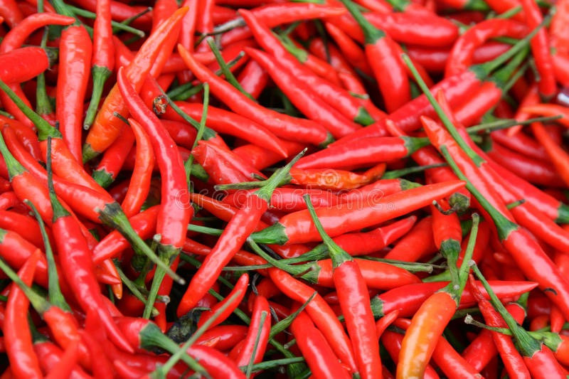 Chillies Long red 50g portion