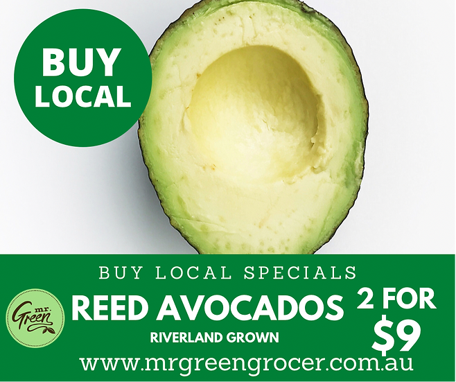 LOCAL BUY SPECIAL Reed Avocado (2 units)