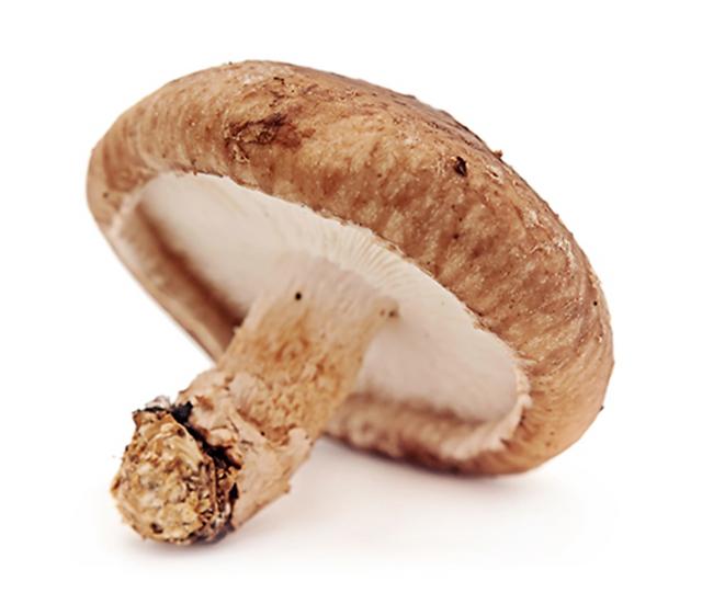 Mushroom Shitake 150g