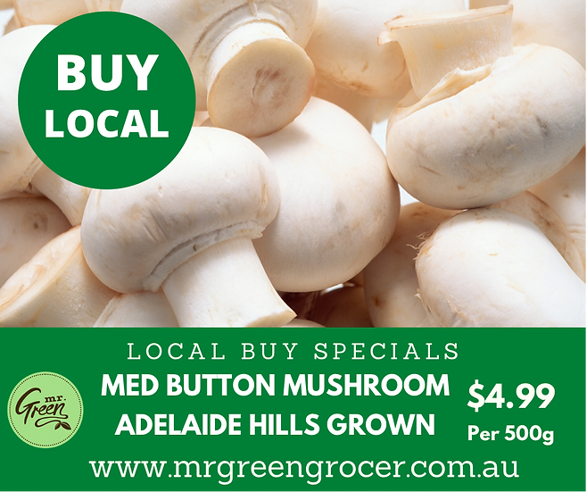 LOCAL BUY SPECIAL Mushroom White Medium Button  (500G Bag)