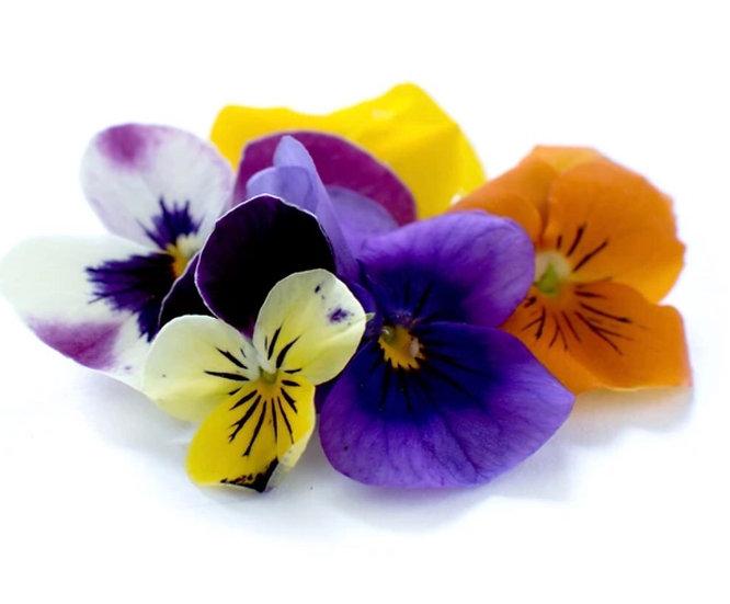 Micro Flowers Punnet
