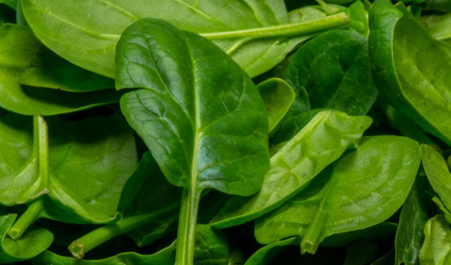 500G Baby Spinach
