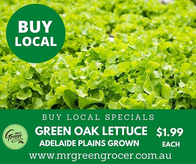 LOCAL BUY Green Oak Lettuce