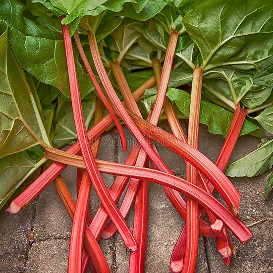Rhubarb 1 kg