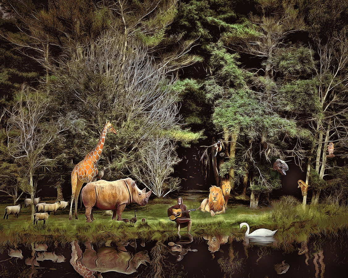Ow to tame Wild Animals