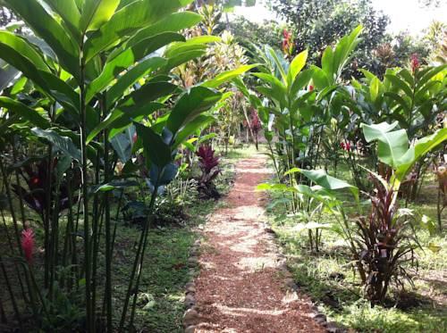 finca verde botanical garden