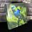 Thumbnail: Saíra-sete-cores (tela canvas)