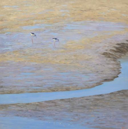 Two Shore Birds