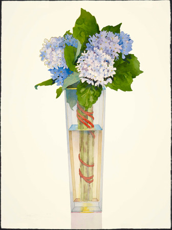 Blue Hydrangea in Tall Vase