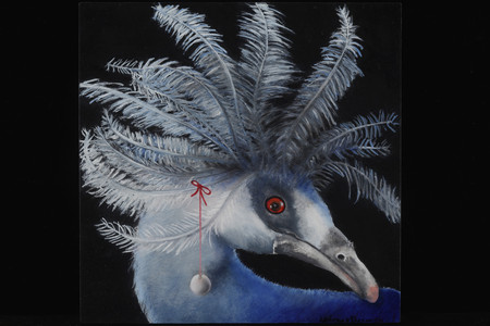 The Pearl (Western Crowned Pigeon, New Guinea)