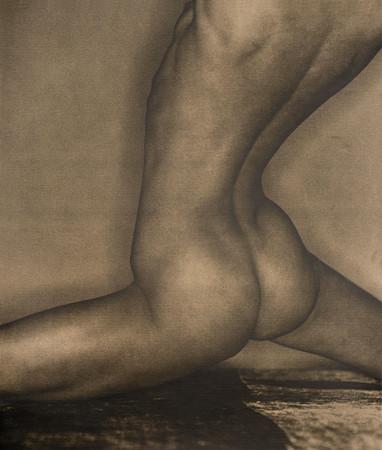 Untitled 16317