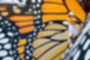 091518-ose-nws-migrating-murals-01.JPG