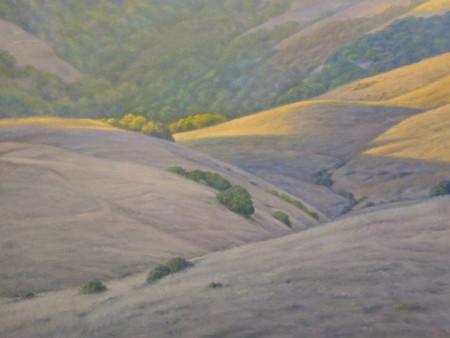 West Marin Hills