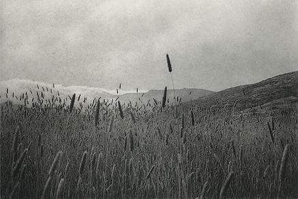 Unai San Martin - Tennessee Valley - photogravure