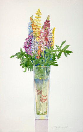 Lupine in a Tall Vase