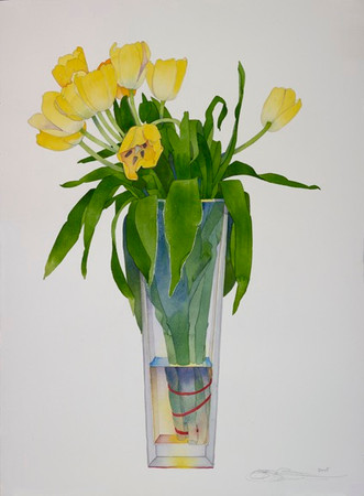 Yellow Tulips in Tall Vase