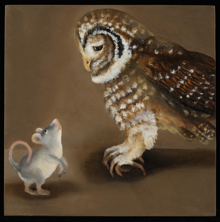 Adrienne ShermanNorthern Spotted Owl