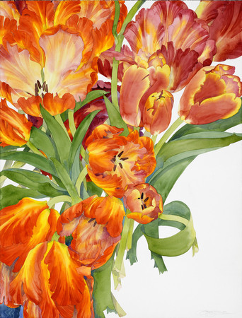Flaming Tulips (from the S.F. Symphony)