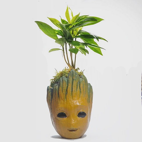Groot Table Planter - Pack of 3