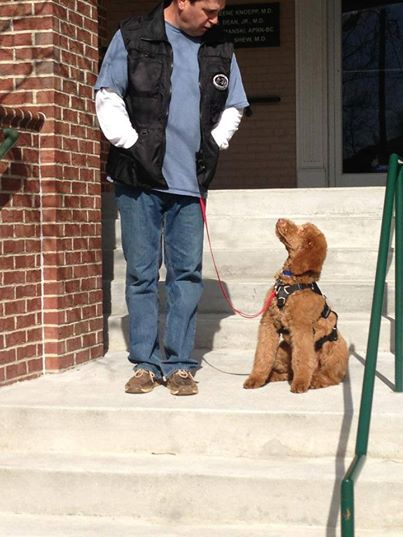 Gia pup service dog training