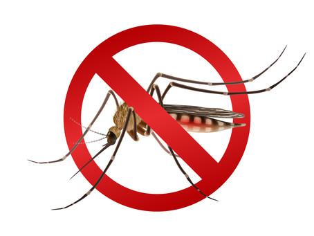 Prevención del Dengue, Zika y Chikunguña
