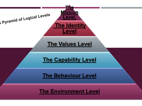 The Dilts Pyramid of Logical Levels (DPLL)