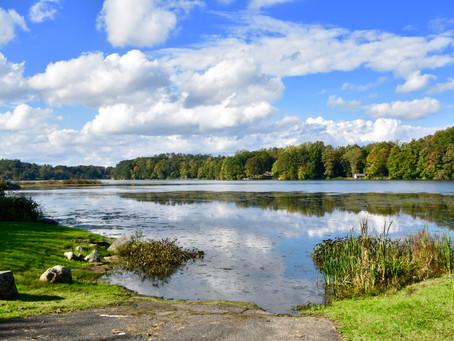 Lake Beauty On A Sunny Day
