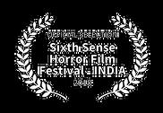 sixth_sense_india.png