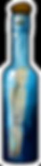 IMG_Bottle_Message_Full.png