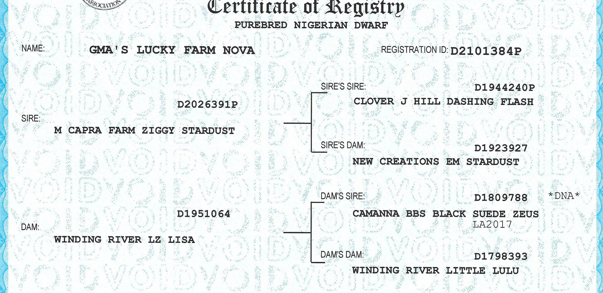 Nova's ADGA Regististry.jpg