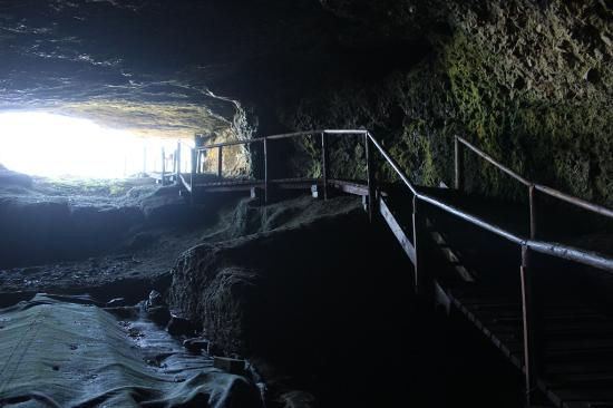nelson-bay-cave.jpg