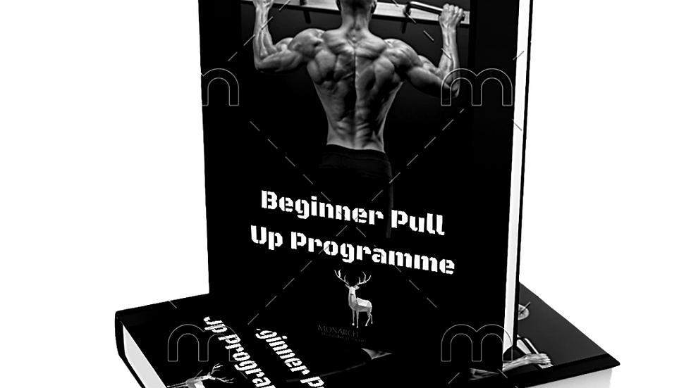Beginner Pull up Programme