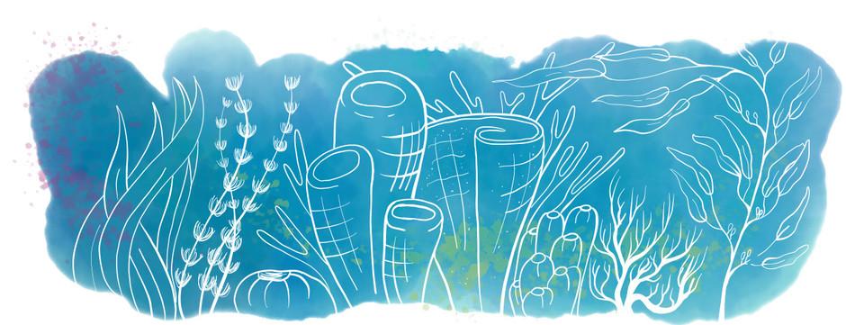 Reef panel 1.jpg
