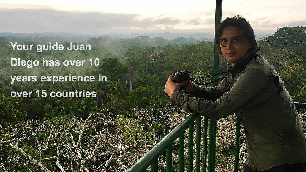 Costa Rica Bird Photo Tour