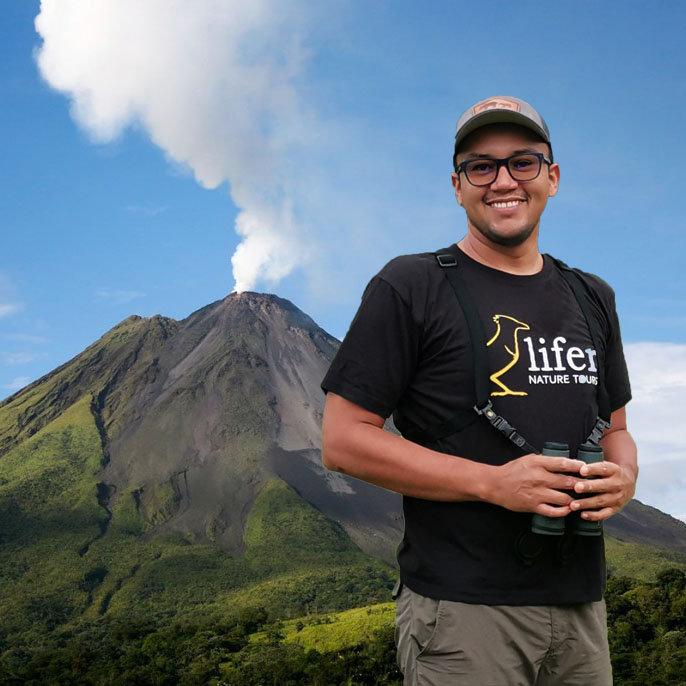 Birds & volcanoes