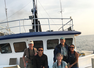 Ninety Leagues Over the Sea: A Birdwatching Cruise to Cocos Island…