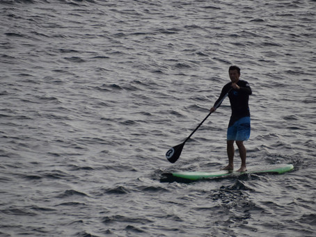 THE BEGINNERS GUIDE TO STAND UP PADDLEBOARDING