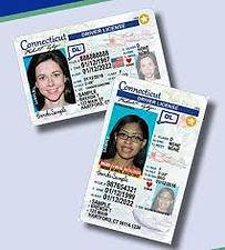 new license 2.jpg