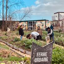 Atelier permaculture