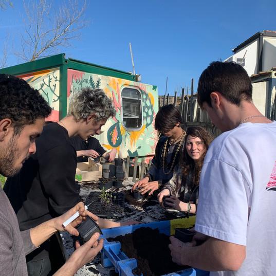 Atelier jardin et permaculture