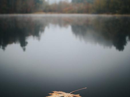 הסתיו ברפואה הסינית - האדם כהשתקפות של הטבע
