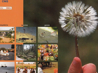 RBA advisor presents on upcoming conference on biodiversity