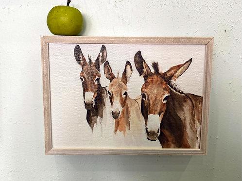 Wall Art - Three Donkeys Mini Framed Canvas