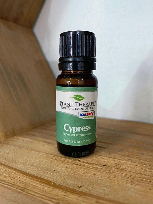 Cypress 10ml - Essential Oil