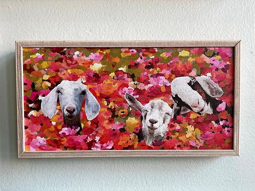 Wall Art - Wildflower Goats Mini Canvas