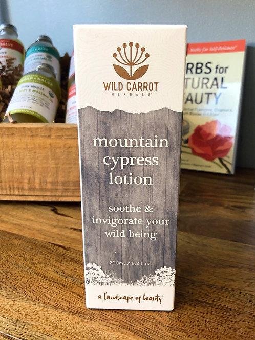 Wild Carrot - Mountain Cypress Lotion