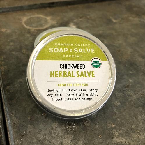 Chickweed - Herbal Salve 2oz