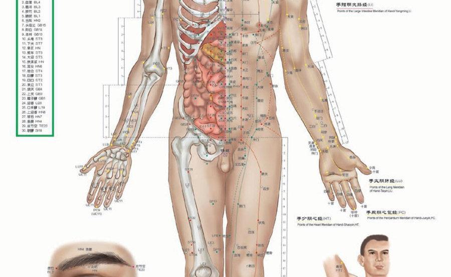 Gratis-verzending-male-menselijke-meridiaanpunten-wallmap-acupunctuur-massage-punt-kaart-een-full-hd